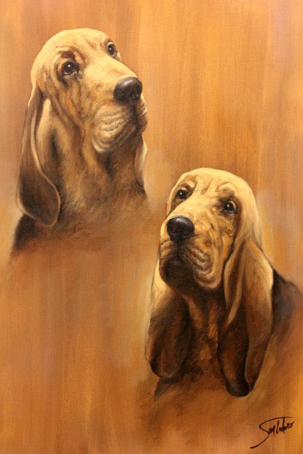 Donated to Virginia Bloodhound Search & Rescue