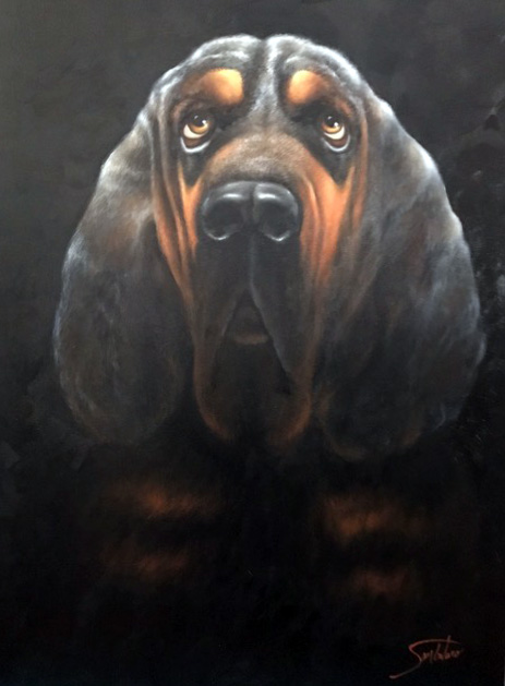 BLOODHOUND - Donated to Virginia Bloodhound Search & Rescue